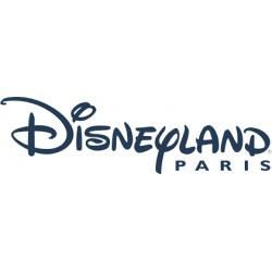 Disneyland paris adulte - à partir de 12 ans