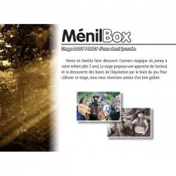 Menil box : baby poney demi journee