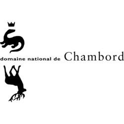 Chateau de chambord - dès 25 ans - sur commande 15 j de délais