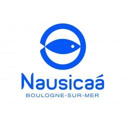 Nausicaa adulte - 13 ans et plus