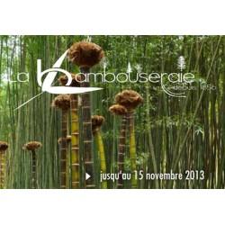 Bambouseraie anduze - de 5 à 13 ans - sur commande 15 j de délais