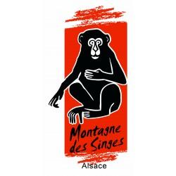 Montagne des singes enfant - de 5 à 14 ans