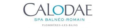 Calodae